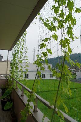 140722_2f_higashi_s.jpg