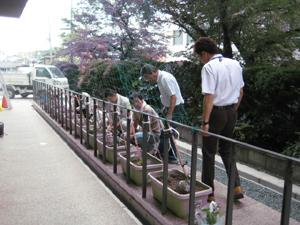 kizu0610-1.jpg