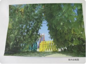 kyoutanabe-3.jpg