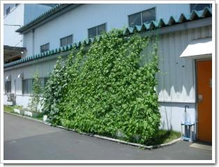 fukuchiyama-1.jpg.JPG